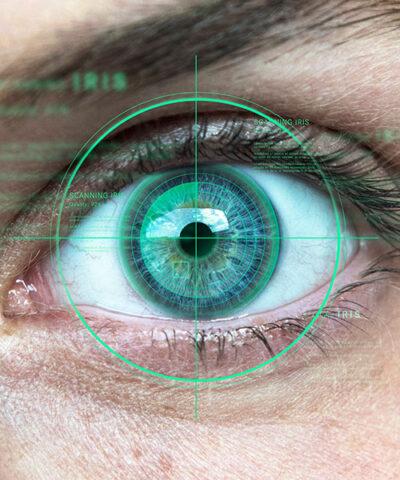 Iris_identification_teaser_750x600